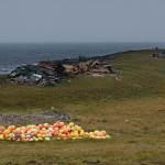 2011-09-24-norden-661.jpg