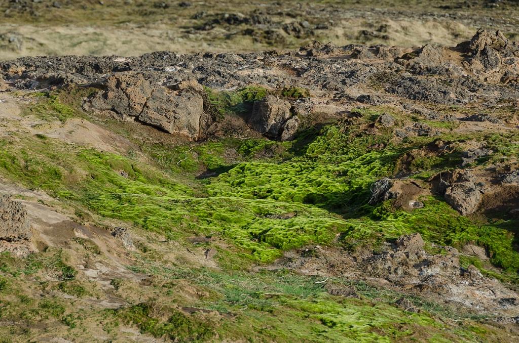 2012-04-13-reykjanes-tour-667.jpg