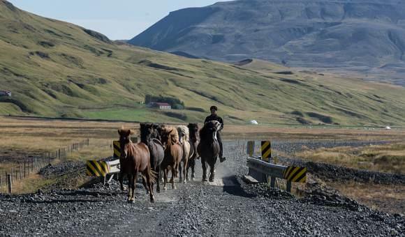 ísland 2014