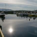 2014-08-28-whale-watching-009.jpg