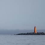 2014-08-28-whale-watching-074.jpg