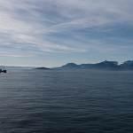 2014-08-28-whale-watching-326.jpg