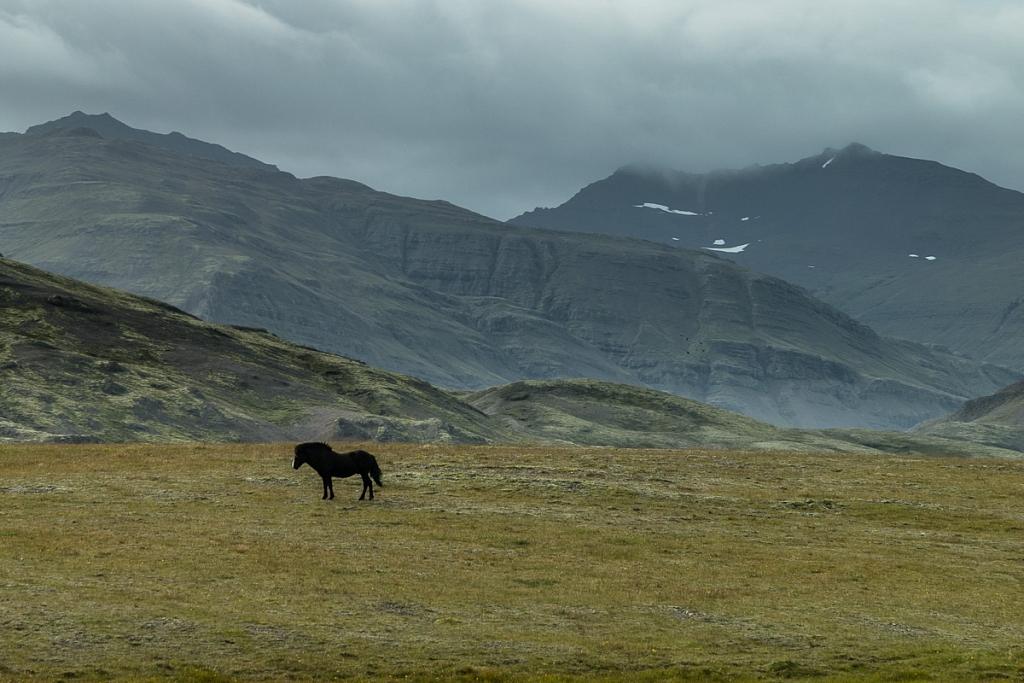 2014-09-02-seydisfjordur-vagnsstadir-283.jpg