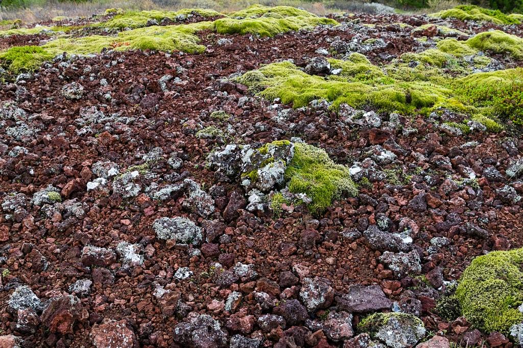2014-09-11-selfoss-geysir-reykjavik-031.jpg