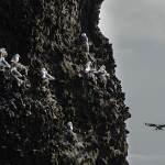 2012-04-13-reykjanes-tour-294.jpg