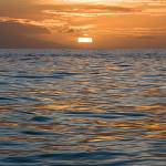 2008-11-13-ocean-sunset-008.jpg