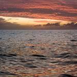 2008-11-13-ocean-sunset-022.jpg