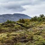 2014-09-11-selfoss-geysir-reykjavik-235.jpg
